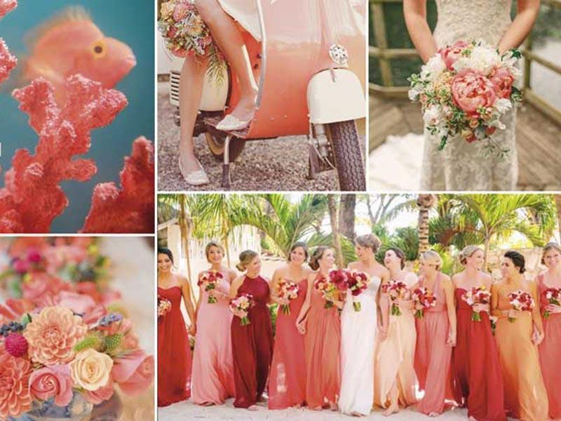Living Coral - Tenuta Cigliano Matrimoni